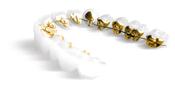 歯科矯正装置:インコグニート2